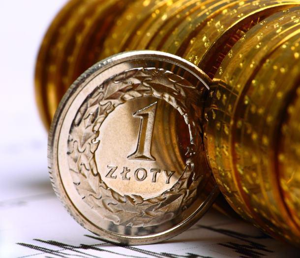 polskie złotówki